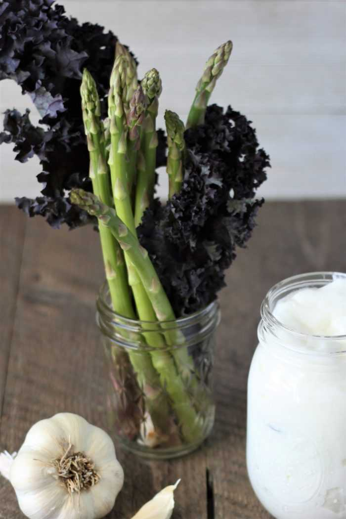 Mind Gut Connection Prebiotics and Probiotics - Yogurt, Raw Garlic, Raw Asparagus and Kale