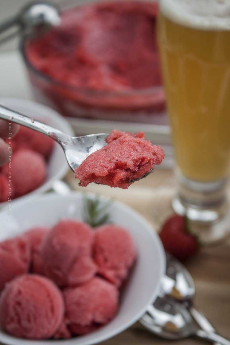 Spoonful of ale strawberry sorbet