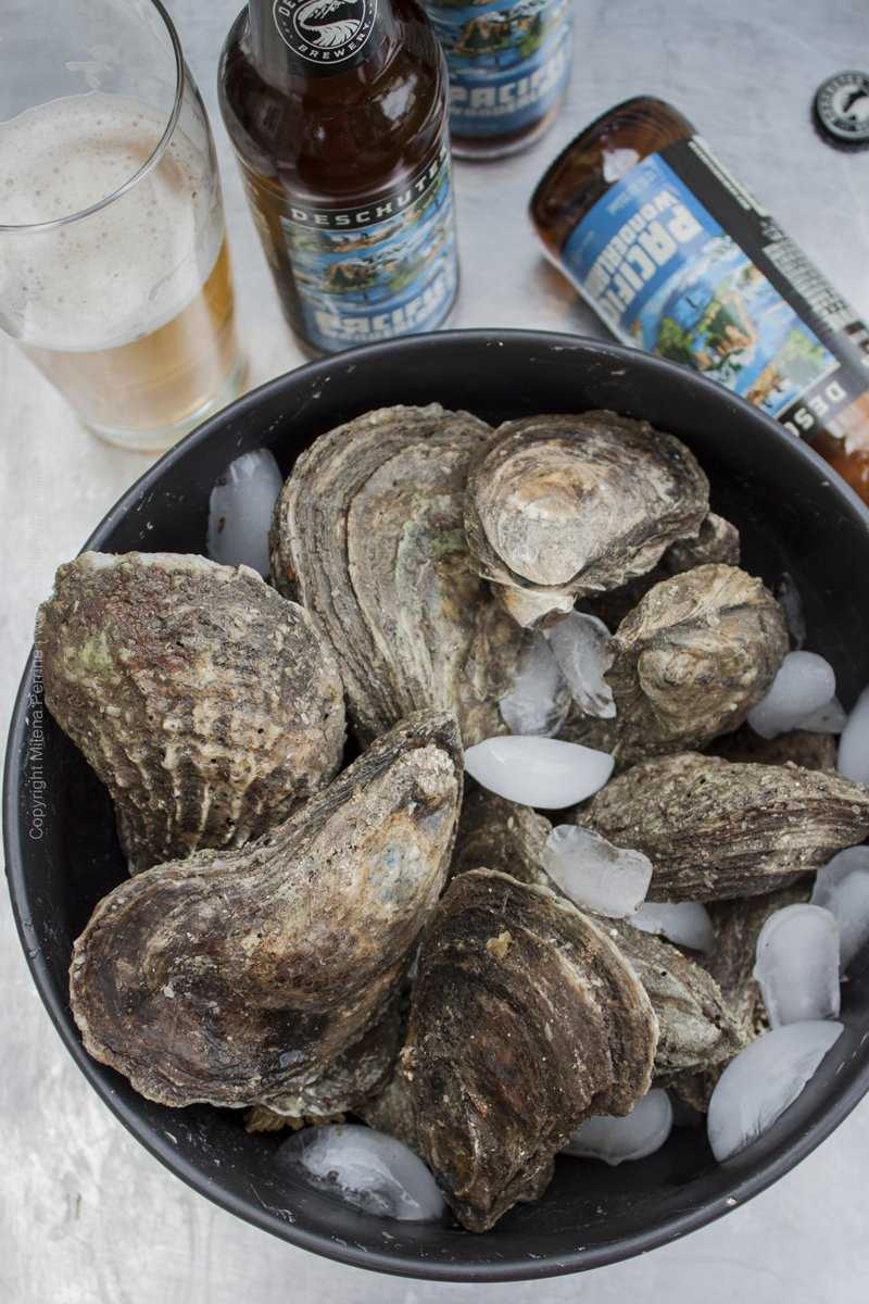 Blue Point Oysters and Pacific Wonderland Lager