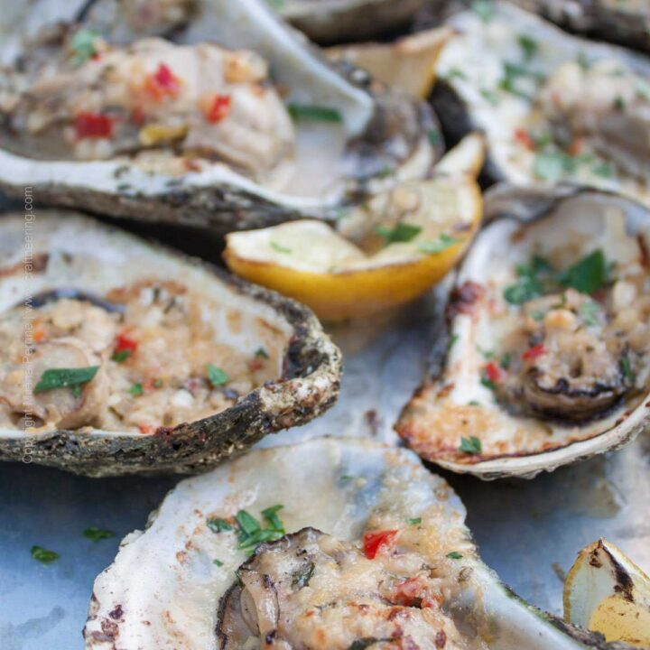 Chargrilled Oysters on the half shell (smoked too:) with butter, Parmesan and lemon zest.