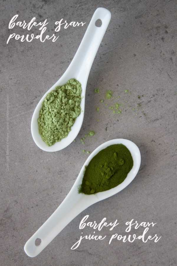 Barley grass juice powder vs barley grass powder shown side by side. Both have health benefits, but are made differently.