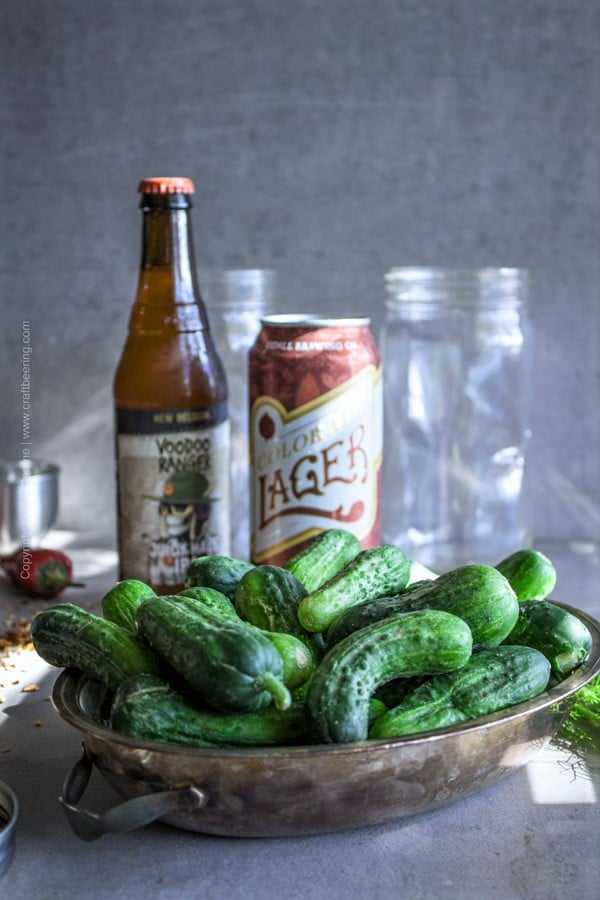 Beer pickles - quick refrigerator version with IPA and lager brined.