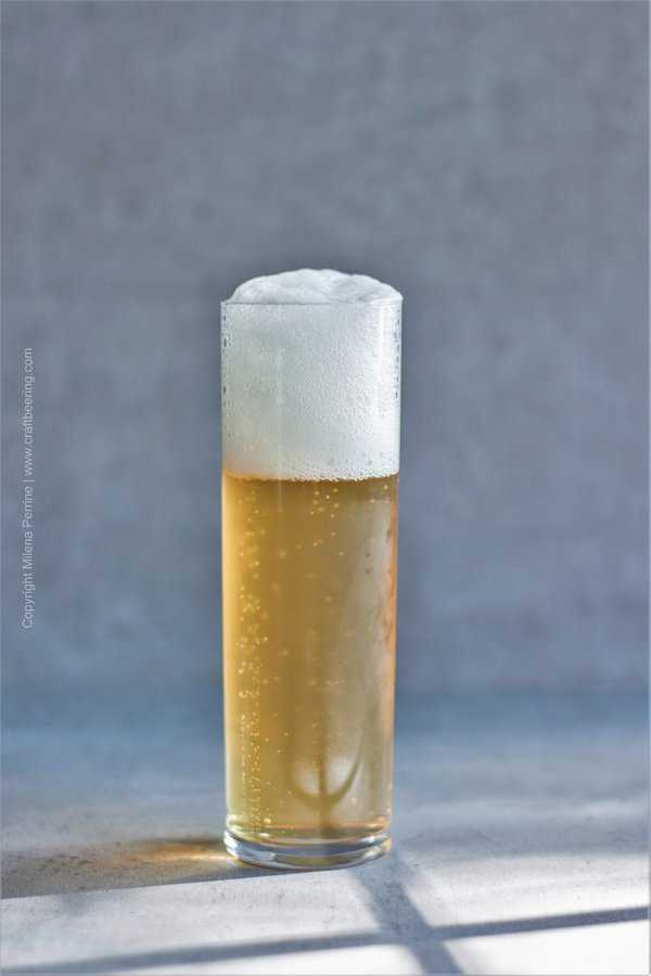 Kolsch beer in a stange glass. Crisp, light and flavored to please the senses.