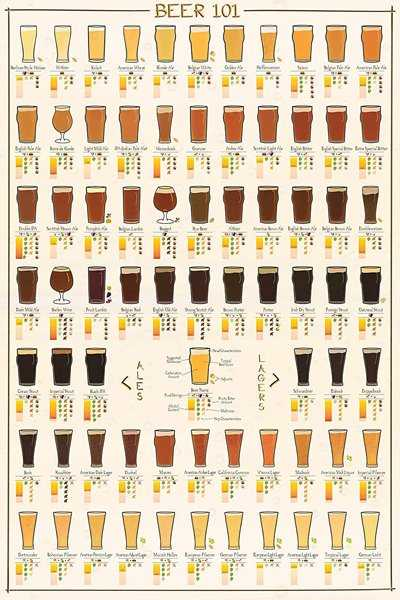Beer poster with craft beer glasses recommended for the most popular styles.