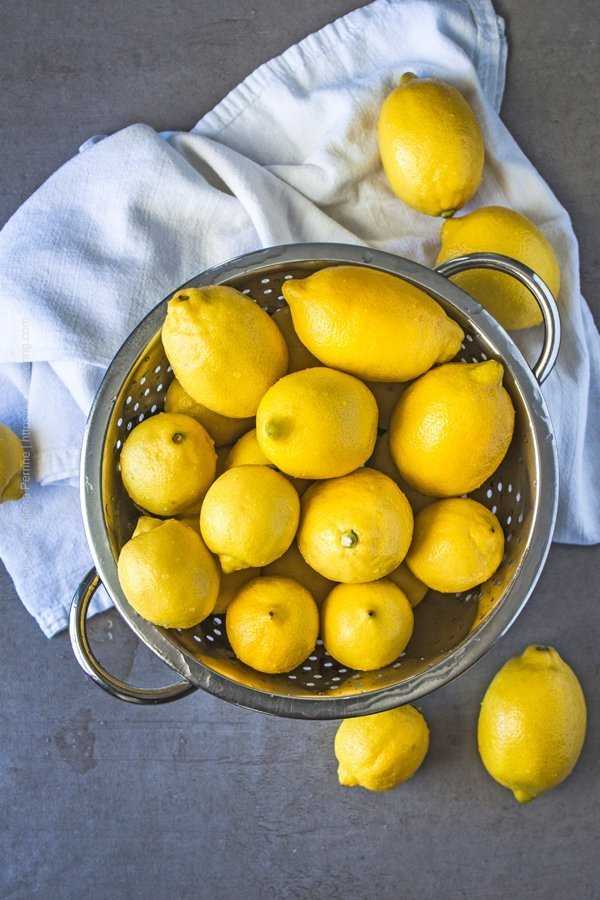 Cleaned whole lemons in a bowl, ready to be preserved with salt.