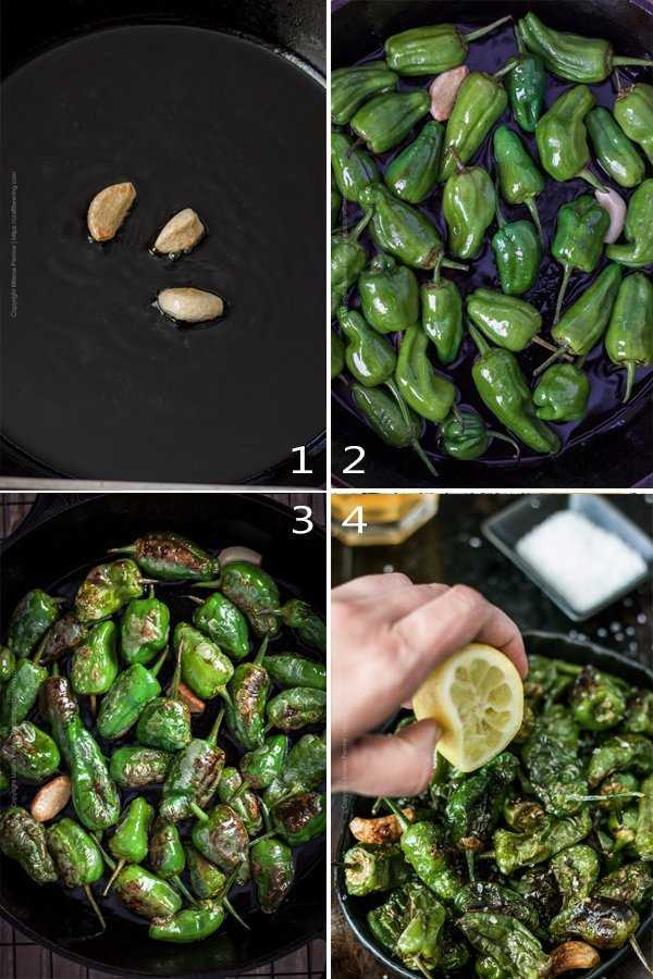Image grid showing the steps to cook padron peppers Spanish tapa.