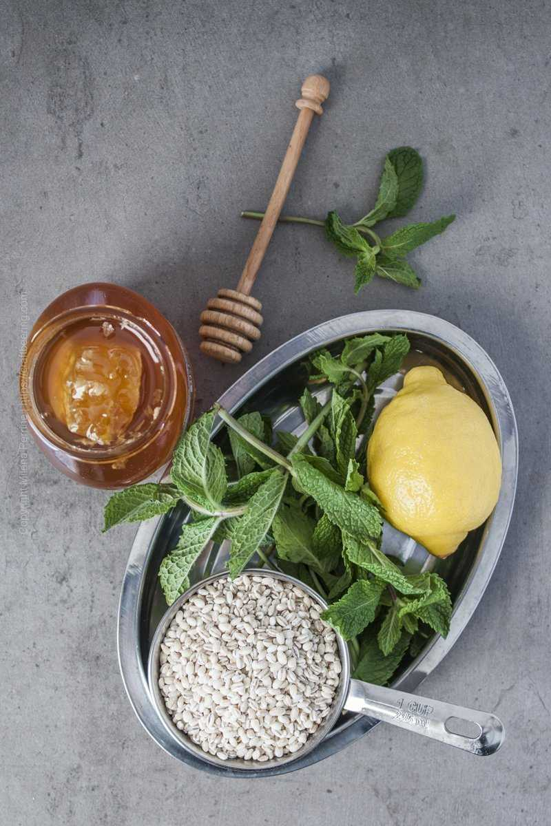 Ingredients for lemon barley water with mint and honey