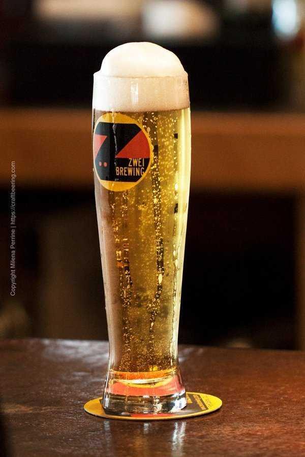 Golden German pilsner lager