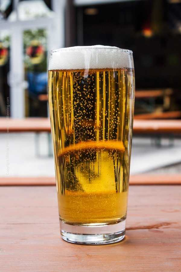 Zwei Brewing Helles lager served in traditional Willi becher