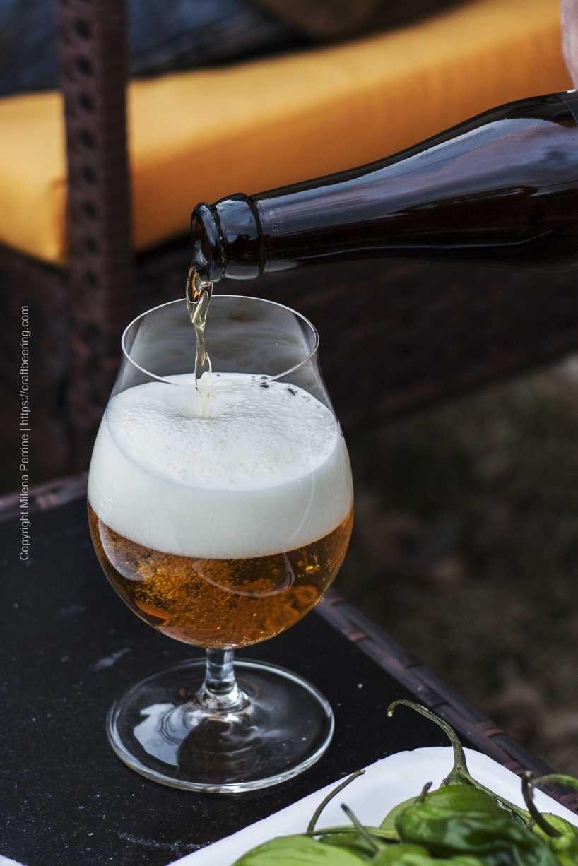 Deceit by Funkwerks, Belgian strong ale best served around 55 F