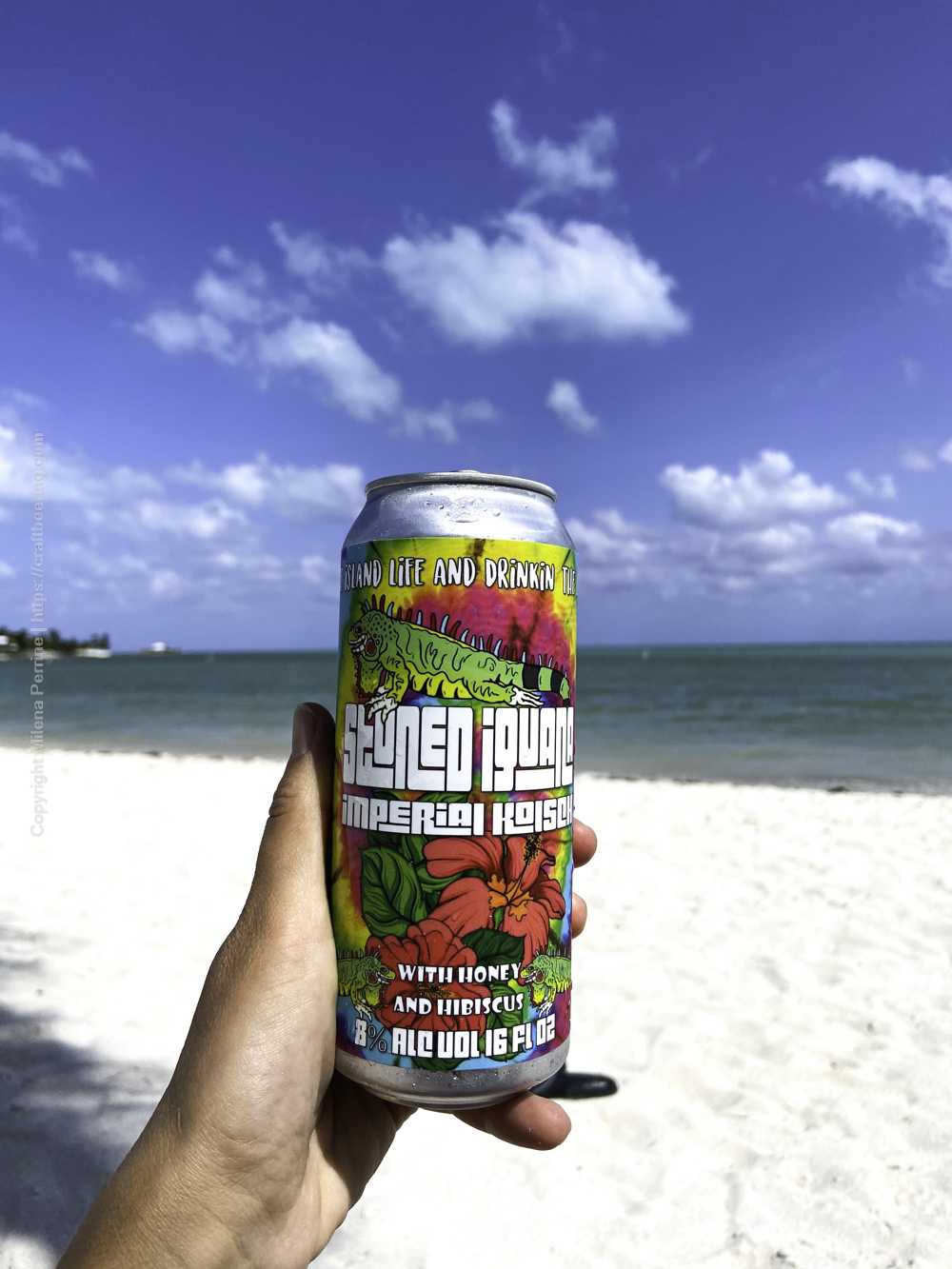 Imperial Kolsch pint can from Florida Keys Brewing Co. on the beach.